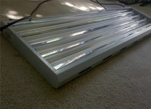 Fluorescent Grow Light 300x216 Fluorescent Grow Lights: Get Intense Vegetative Growth with Less Space