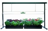 Hydrofarm 4 Foot T5 Grow Light System Fluorescent Grow Lights: Get Intense Vegetative Growth with Less Space