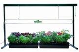 Hydrofarm 4 Foot T5 Grow Light System Fluorescent Grow Lights: Get Intense Vegetative Growth with Less Space