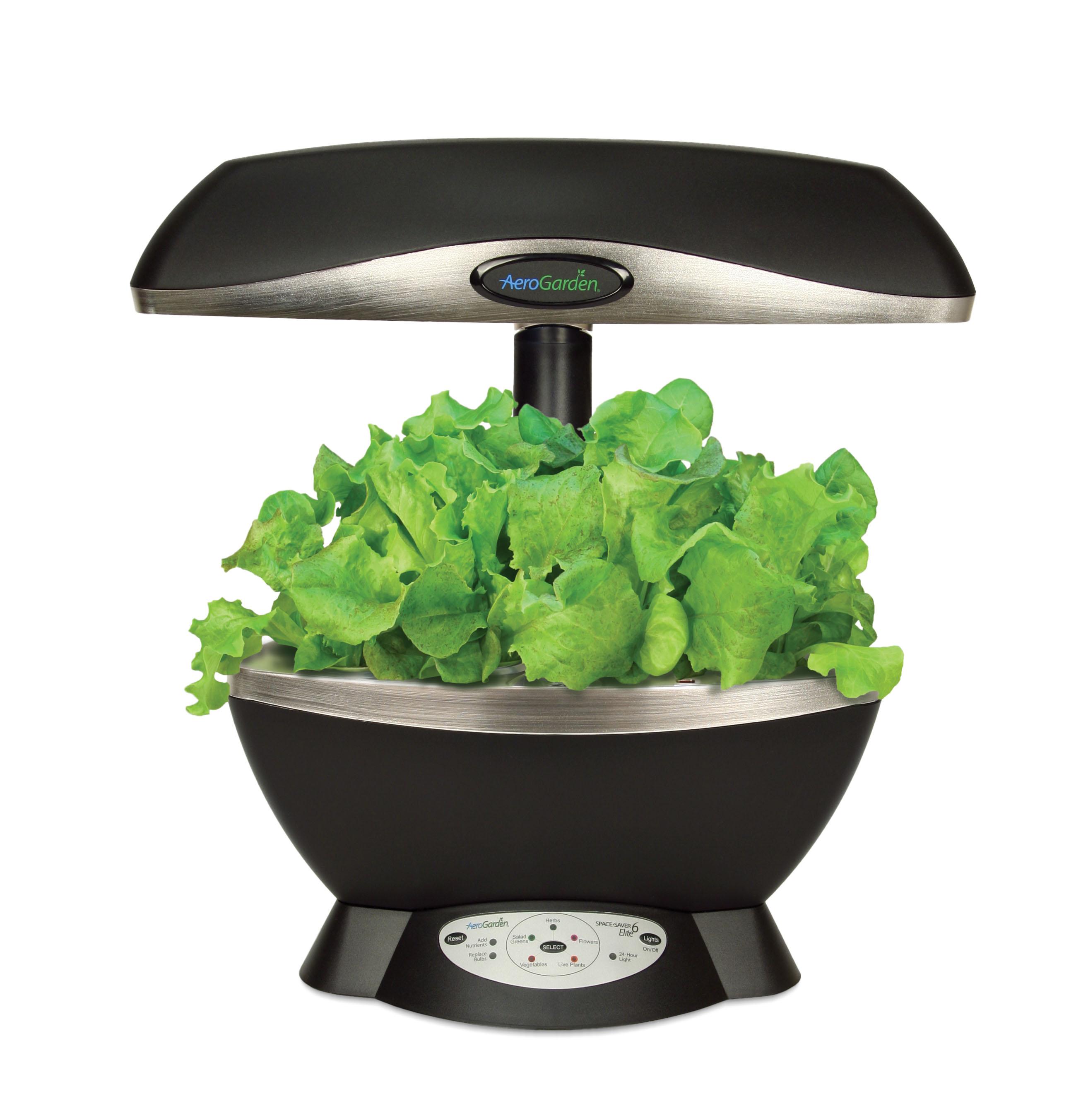 Indoor hydroponic salad garden aquaponics at home for Indoor gardening hydroponics